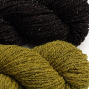 Lauren chose Natural Dark for her main color and Pine Warbler for her accent color