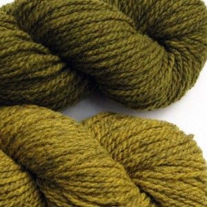 Maureen selected Lichen  for her main color and Pine Warbler for her accent color.