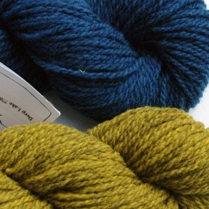 Tracy chose Deep Lake for her main color and Pine Warbler for her contrast color.