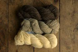 Organic (DK and Worsted weights)